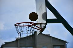 Koszykówka, Obraz Stock