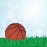 Koszykówka na trawie Zdjęcie Stock