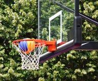 Koszykówka obręcz Zdjęcie Royalty Free