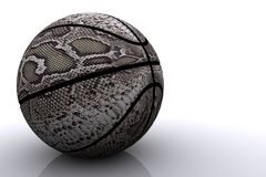 koszykówka odizolowane skóra węża Obraz Stock