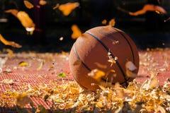 Koszykówka w jesieni obrazy stock
