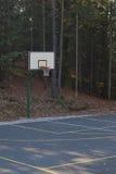 Koszykówka w lesie Obraz Stock