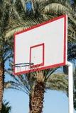 Koszykówki backboard w palmach fotografia royalty free