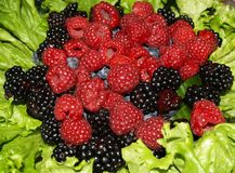 koszykowa owoców zdjęcia royalty free