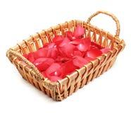 koszykowego kwiatu płatki zdjęcie royalty free