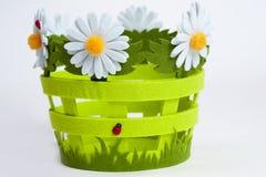 koszykowi dekoracyjni kwiaty Obrazy Royalty Free