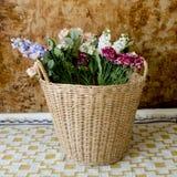 koszykowi kolorowi kwiaty Zdjęcia Stock