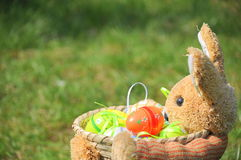 koszykowi królika Easter jajka wypełniający Obraz Royalty Free