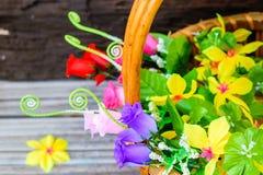 koszykowi piękni kwiaty Fotografia Royalty Free