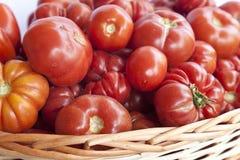 koszykowi pomidory Zdjęcia Royalty Free