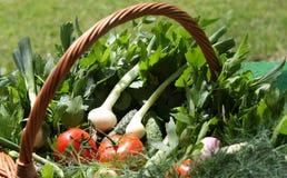 koszykowi warzywa zdjęcia stock