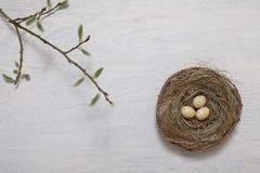 koszykowi Wielkanoc kolor jaj Obrazy Royalty Free