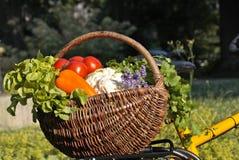 koszykowi świezi warzywa Zdjęcie Stock
