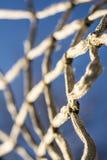 Koszykowy balowy obręcz Obrazy Stock