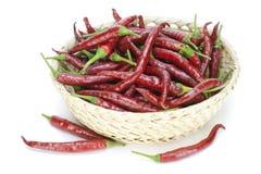 koszykowy chili gorący pieprze czerwoni Fotografia Royalty Free