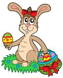 koszykowy Easter jajek królik Obraz Stock
