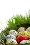 koszykowy Easter jajka wicker Obrazy Royalty Free