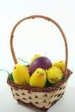 koszykowy kurczątek Easter jajko Fotografia Stock
