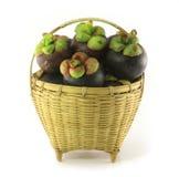 koszykowy mangostan Obraz Stock
