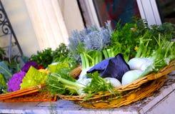 Koszykowy pełny warzywa Obraz Stock