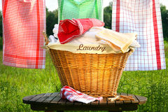 koszykowy wieśniaka pralni tabeli Obrazy Stock