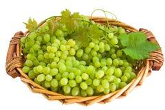 koszykowy winogrono Fotografia Royalty Free