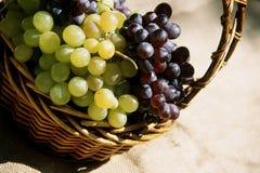 koszykowy winogrono Zdjęcie Stock