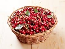 koszykowych wiśni świeża czerwień Obrazy Royalty Free