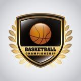 Koszykówka projekt Fotografia Royalty Free