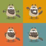 kotów inkasowy ilustraci wektor Zdjęcie Royalty Free