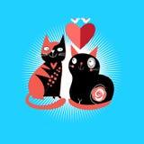Kotów kochankowie Obrazy Royalty Free