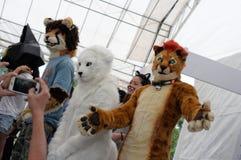 Kotów kostiumery Zdjęcia Royalty Free