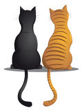 Kotów kumpel Obrazy Stock