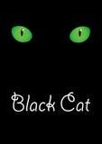 Kotów oczy Zdjęcia Royalty Free