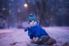 Kotów spacery w zimie Obrazy Royalty Free