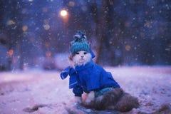 Kotów spacery w zimie Fotografia Royalty Free