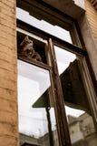 Kotów spojrzenia z okno Obrazy Stock