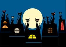 kotów tłumu ilustracja zadasza siedzącego wat Zdjęcia Royalty Free