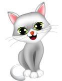 Kot, figlarka/ Zdjęcie Royalty Free
