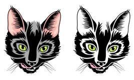 Kot głowa Obrazy Stock