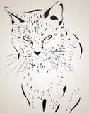 Kot ilustracja Ilustracji