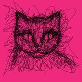 kot Koszulek grafika doodle Obrazy Royalty Free