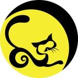 kot księżyc Zdjęcia Royalty Free