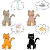 Kot myśli w bąblu Obraz Stock