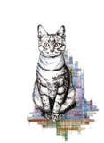 Kot na bielu tła atramentu grafika ilustracji