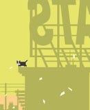 Kot na górze budynku Zdjęcie Royalty Free