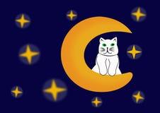Kot na księżyc Zdjęcia Stock