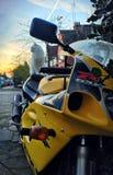 Kot na motocyklu fotografia royalty free