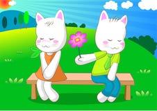 kot nieśmiały Zdjęcia Royalty Free