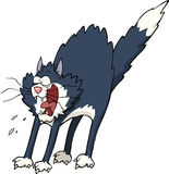 kot się royalty ilustracja